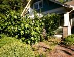 Case Study: Building Soil 8/9