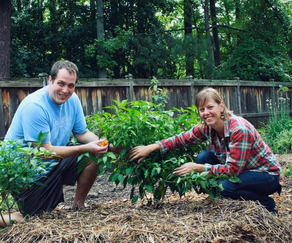 Case Study: Beginning Gardener