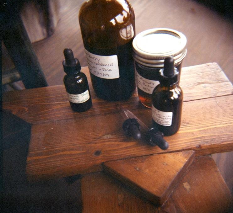 Case Study: Medicinal Herbs